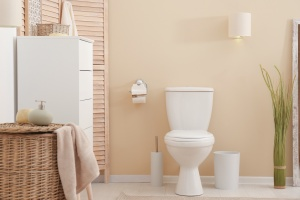 toilet that works because of Springfield, VA Plumbing Services