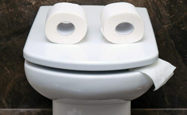 toilet bowl with two rolls of paper similar to eyes or glasses